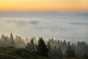 Le Mont-Tendre, brouillard du matin