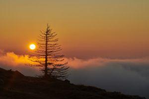 Premières lumières dans la région du Mont-Tendre