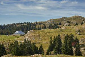 Mont Tendre
