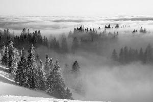 Brouillard sur le Jura